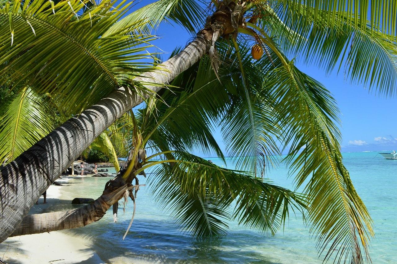 Offerta Speciale Luna di miele Polinesia